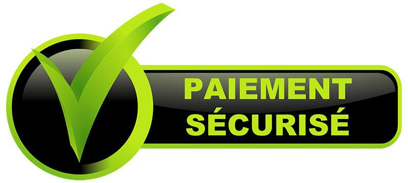 Paiement securise securite 1